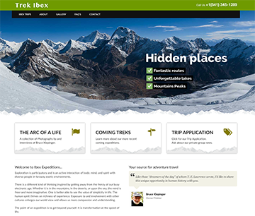 Trek Ibex Web Design